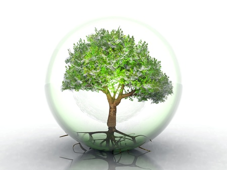 green tree in a transparent bubble
