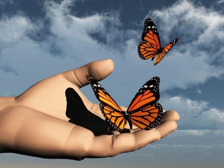 metamorfosis: una bella mariposa de color en la mano Foto de archivo