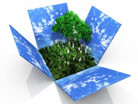 a box with grass and a green tree photo