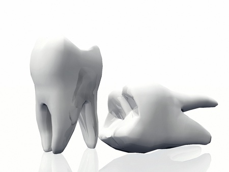 carious: the molar teeth on a white background