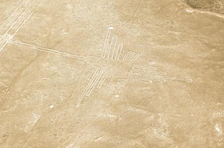 ナスカの地上絵ハチドリの地上絵
