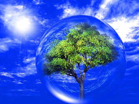 árbol verde en una burbuja transparente