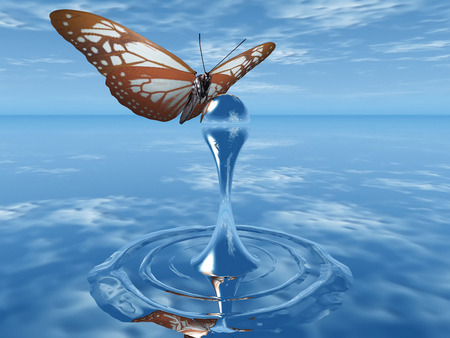 seasonal worker: the butterfly and the drop of water