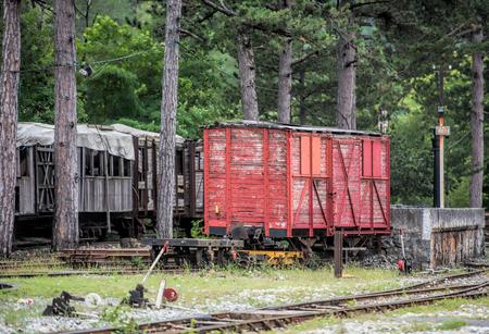 carreta madera: Viejo vag�n de madera