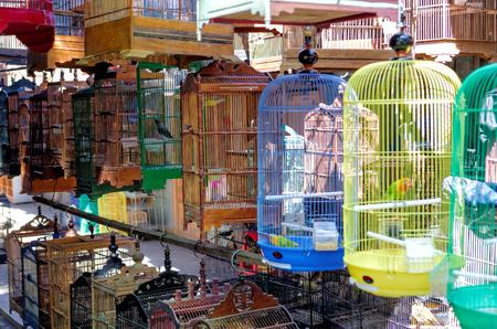YOGYAKARTA: Yogyakarta Bird Market Stock Photo