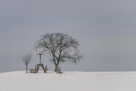 calvary: Calvary and trees in winter Stock Photo