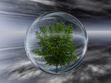 glass sphere: Tree Protection Stock Photo