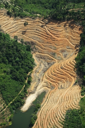 illegal logging: excavated forest for agriculture - arial view Stock Photo