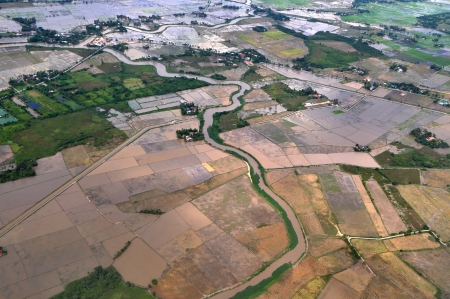 Arial view of paddy field in Kedah, Malaysia