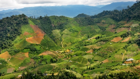 tropical agricultural valley on the mountain photo