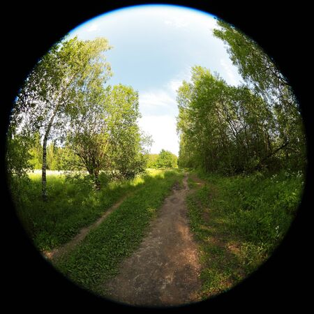 Around on Sky. Taken with a fisheye lens to give the special plate effect. The fresh air feel and clear blue sky are shown on the picture. Imagens