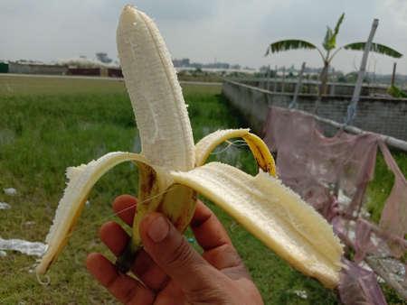 banana close-ups with nature