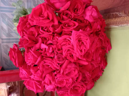 red colored rose stock with leaf for bouquet Banque d'images