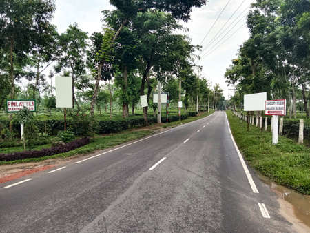 a road view on tea farm for travel