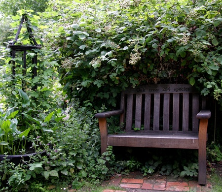 Park Bench under overgrown bush photo
