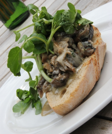 Creamy Cheese Mushroom Bruschetta with Watercress  on French Baguette photo