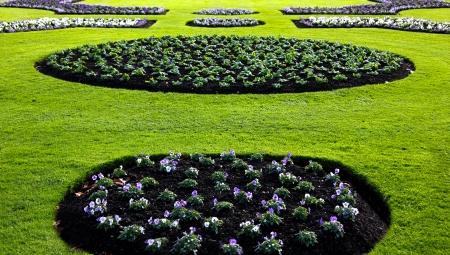 Freshly dug Flower Bed in a green lawn