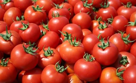 domates: ripe tomatoes Stock Photo