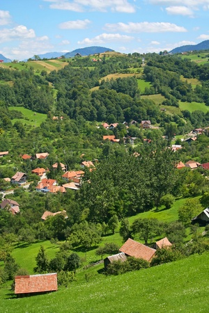 View of a village in Carpathian mountains
