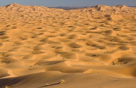 Duinen van de Sahara woestijn in Marokko Stockfoto