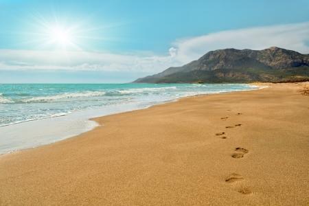 パタラをビーチの砂の足跡