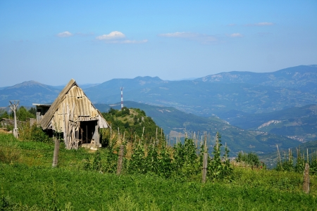 lonely hut in Serbian mountains photo