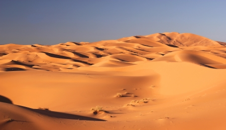 panoramic view of Sahara desert in Morocco  photo