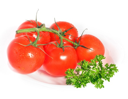 Red ripe tomatoes with parsley on plate isolated on white background Stock Photo - 18748610