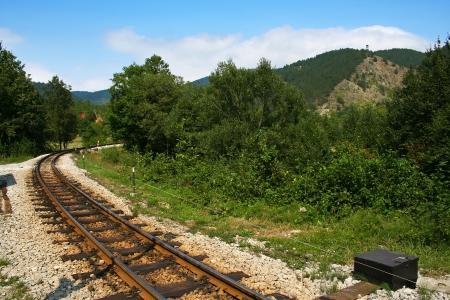 narrow gauge: Old narrow gauge railway in Mokra Gora, Serbia