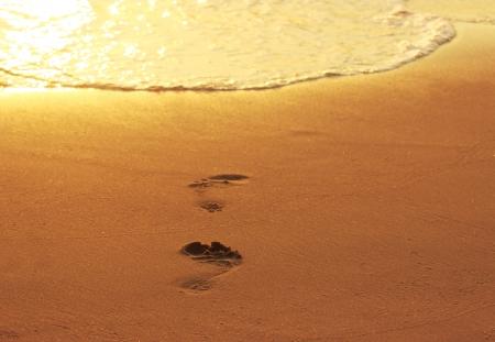 sea mark: Footprints in the sand beach at sunset Stock Photo