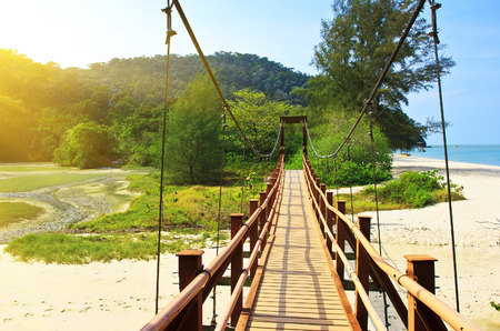 Suspension bridge in the National Park Penang photo