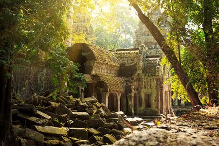 Prachtig uitzicht van Ta Phrom tempel ruïnes in Angkor, Siem Reap Stockfoto - 26586834