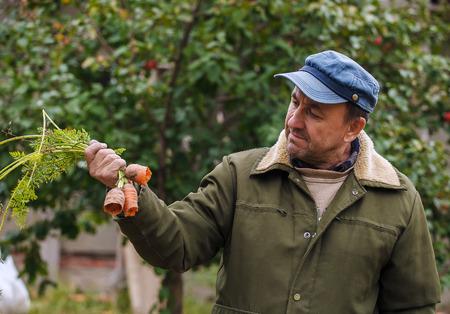 Campesino con zanahorias dañadas en su jardín