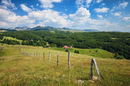 serene landscape: Serene view of landscape in Durmitor National Park, Montenegro