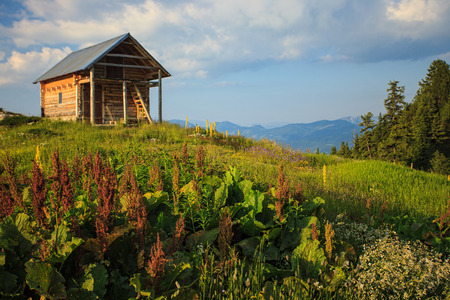 abandoned house: View of abandoned house in Visitor mountains, Montenegro Stock Photo
