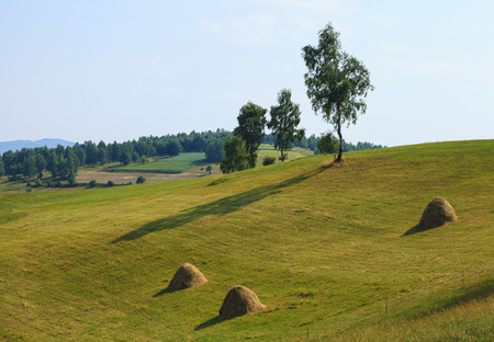 serene landscape: Serene view of countryside landscape in Serbia