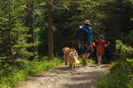 Vader, zoon en hun hond lopen in een zomer bos