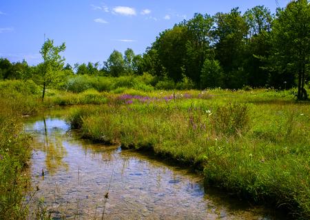 serene landscape: Serene landscape in Plitvice lake national park, Croatia
