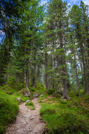 Adolf Munkel trail - famous tourist route in Dolomite Alps, Italy Stock Photo