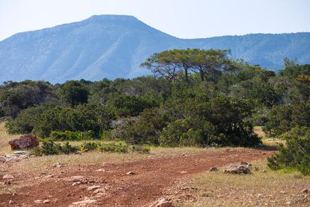 Ground road across Akamas Peninsula National Park, Cyprus Stockfoto