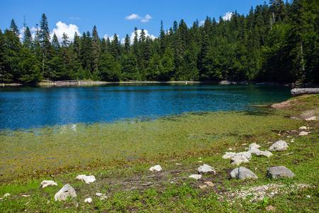 Zabojsko Lake in Durmitor National Park, Montenegro Stockfoto