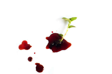 A small tree and blood isolated on white background
