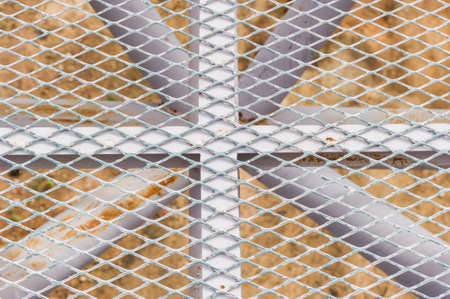 metal grate: Big metal grate with steel Iron raw wire Stock Photo