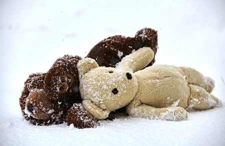 snow storm: Teddy bears in snow storm