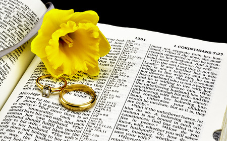 king james: Bible on Marriage with Wedding Rings and Daffodil Closeup