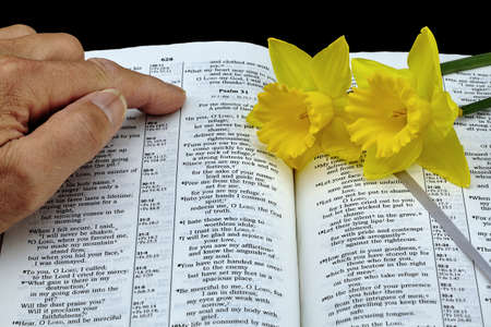 isaiah: Man pointing to Bible with yellow daffodil flowers