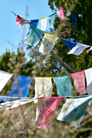 spiritual journey: traditional buddhist prayer flags on mountain pine trees in the wind Stock Photo