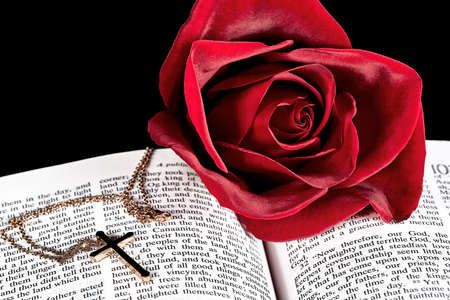 gold cross: red rose on book with gold cross pendant necklace with black background