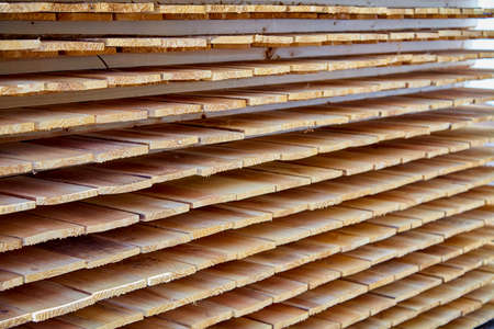 construction materials: wood construction materials for building industry