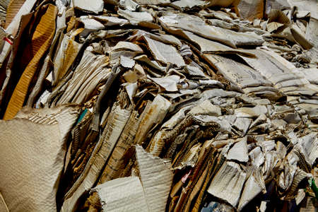 waste management: compacted bale cardboard biodegradable for recycling and disposal industry waste management Stock Photo